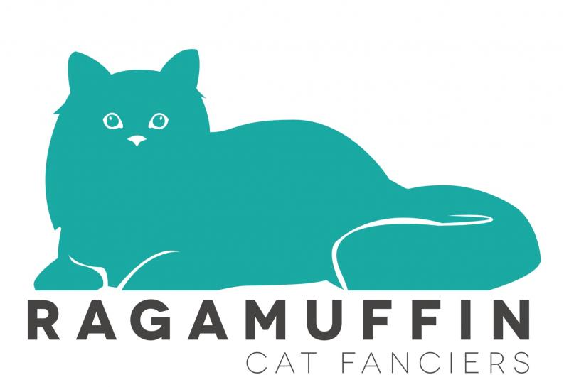 RagaMuffin Cat Fanciers